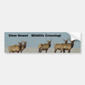 För älgvinter för tjur E0018 tjurar Bildekal