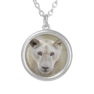 För andekrigare för vit lejon afrika silverpläterat halsband