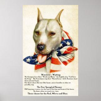 För banergrop för vintage stjärna Spangled affisch Poster