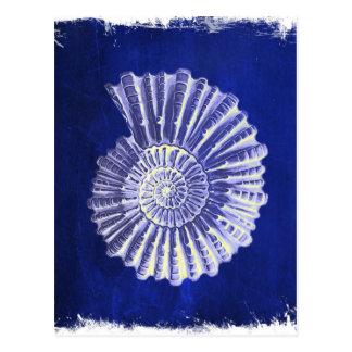 för blåttvit för vintage botaniskt kust- snäckskal vykort