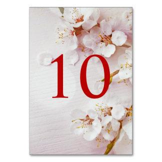 För blommarelegant för vit körsbärsröd bordsnummer