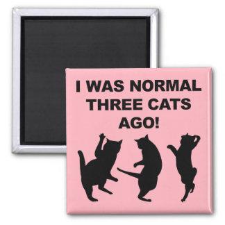 För det normala tre för katter magnet för kyl