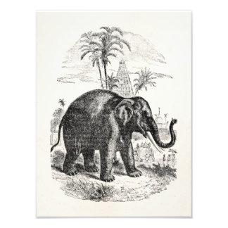 För elefantpersonlig för vintage asiatiska fototryck