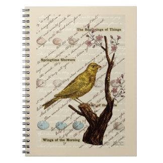 För fågelägg för vår gult träd för blommar anteckningsbok