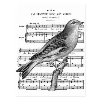 För fågelsång för vintage fransk vykort för musik