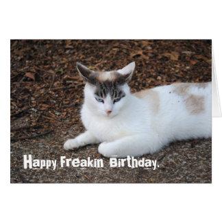 För Freakin för förargad katt lyckligt kort