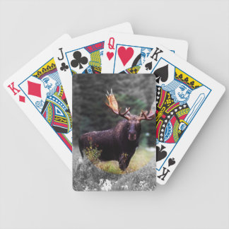 för jägaren spelkort