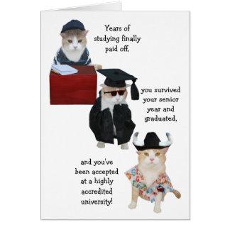 För katthögstadium för anpassade rolig studenten hälsnings kort