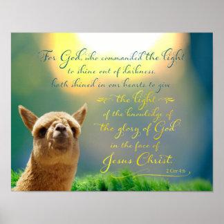 För krickabibel för Alpaca guld- affisch för
