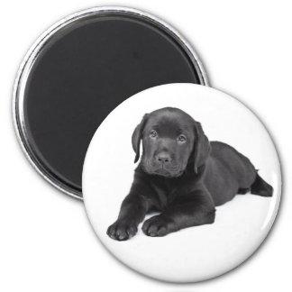 För Labrador för kärlek svart lab svart hund för Magnet