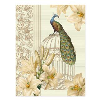 för liljavintage för art nouveau fransk påfågel vykort
