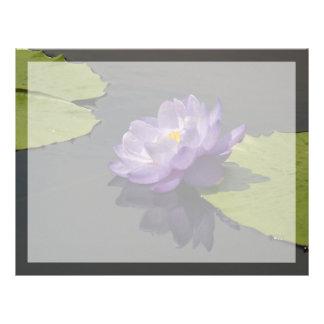 För lotusblommanäckros för blått purpurfärgad brevhuvud