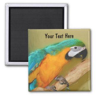 För Macawpapegoja för blått guld- magnet för djur