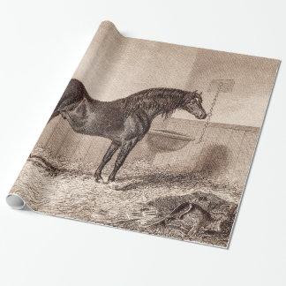 För Norfolk för vintage1800shäst Retro vagnshäst Presentpapper