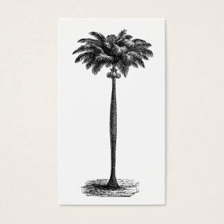 För öpalmträd för vintage tom tropisk mall visitkort