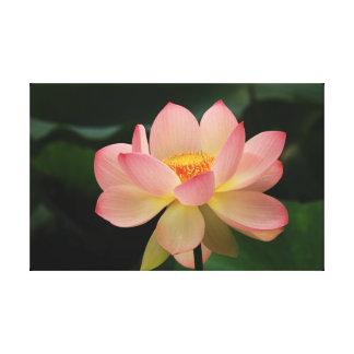 För rosagrönt för tropisk trädgårds- lotusblomma canvastryck