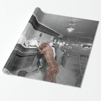 För salongkrogen för hunden fotograferar vänlig presentpapper