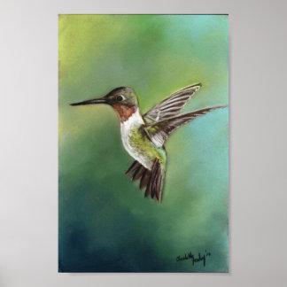 För surrfågel för Ruby Throated tryck för konst