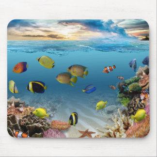 För undervattens- tropisk fisk korallrev för hav musmatta