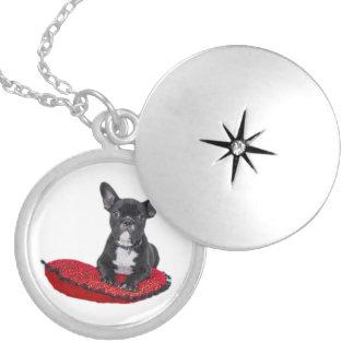 För valpfoto för fransk bulldogg gullig locket berlockhalsband