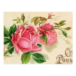 För vintage franska för publicitet röd ros vykort