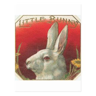 För vintage kaninkanin lite vykort