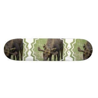 ForagingSkateboard för älg Skate Board Deck
