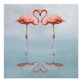 Förälskad affisch för rosa Flamingos