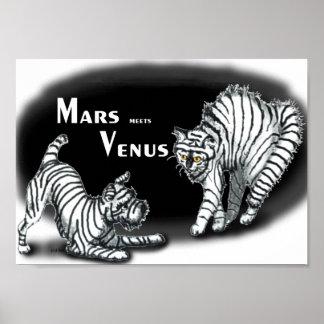 Fördärvar möter Venus Poster