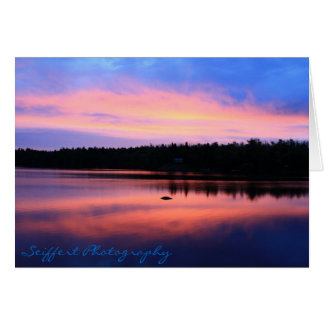 Forell sjö OBS kort