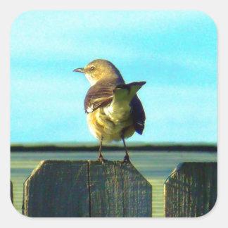 Förlöjliga fågeln på staket fyrkantigt klistermärke