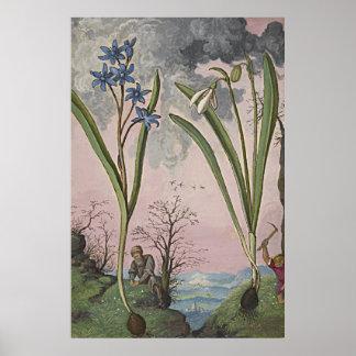 Forntida botanisk konst Snowdrop Poster