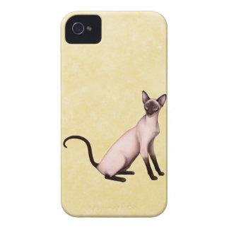 Försegla pekar det Siamese kattblackberry iPhone 4 Case-Mate Skal