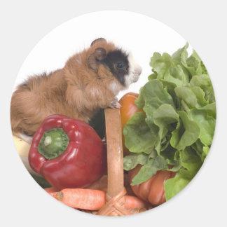 försökskanin i en basket av grönsaker runt klistermärke