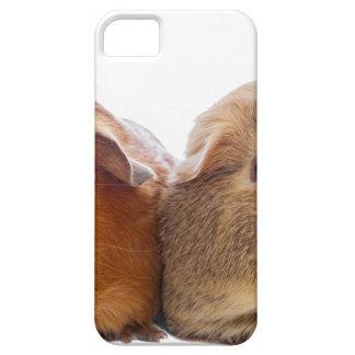 Försökskanin iPhone 5 Case-Mate Skydd