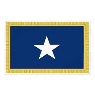 Första Texas Cofederate för Bonnie blåttflagga vol Konstfoto