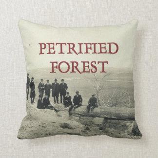 Förstenad skog för ABH Kudde