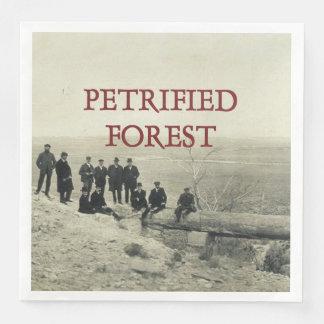 Förstenad skog för ABH Papper Servetter