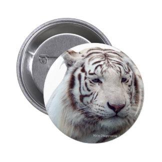 Försvinnande tigrar standard knapp rund 5.7 cm
