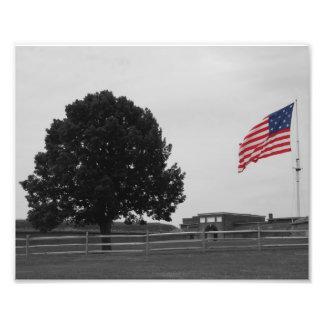 Fort McHenry Fotografi