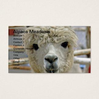 Förtjusande Alpacaängar Visitkort