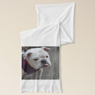 Förtjusande bulldogg sjal
