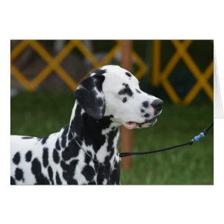 Förtjusande Dalmatian Hälsningskort