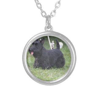 Förtjusande skotsk Terrier Silverpläterat Halsband