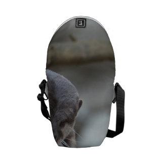 Förtjusande utter kurir väska