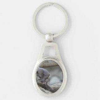 Förtjusande utter ovalt silverfärgad nyckelring