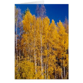 Förtrollad skog hälsningskort