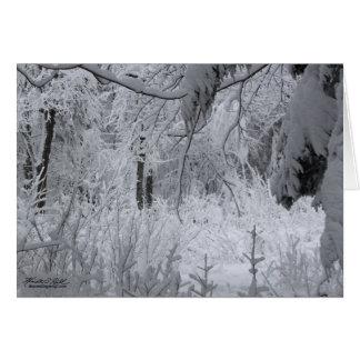 Förtrollad vinterskog hälsningskort