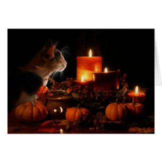 Förtrollande kattungekort hälsningskort