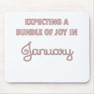 Förvänta en packe av glädje i Januari pink.png Musmatta